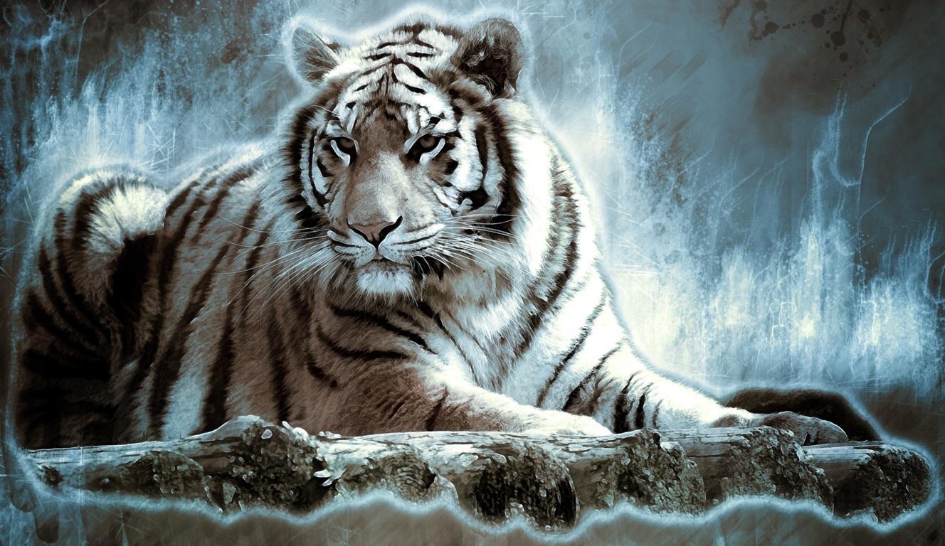 Black and White Tiger Wallpaper
