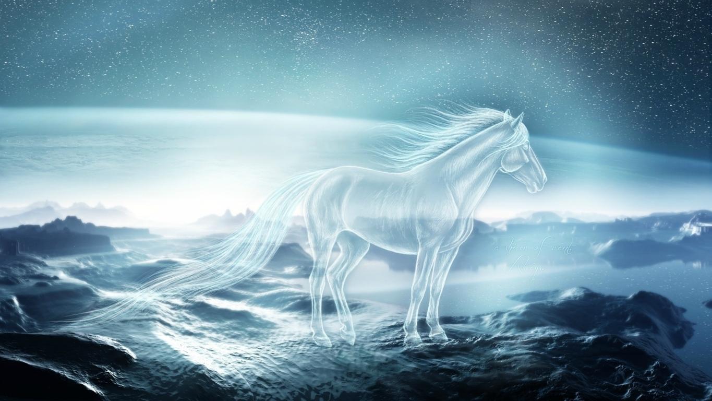 Horses Wallpaper HD 4K