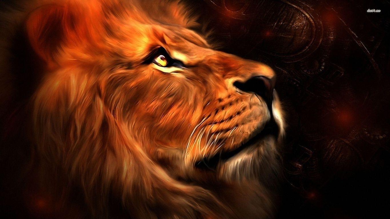 Lion Roar Free Download HD Wallpaper HD Wallpaper Site