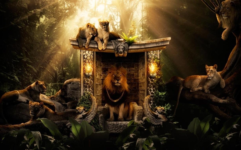 Lion Roar Free Download Wallpaper Hd Wallpaper Site Hd