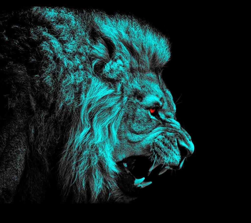 Lion Wallpaper 24