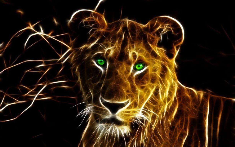 Lion Wallpaper Widescreen HD Wallpaper