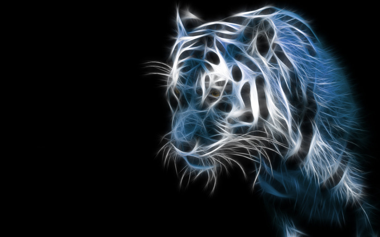 Tiger HD Wallpaper and Background