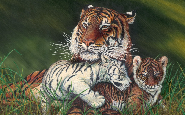 Tiger Wallpaper 3d Desktop Wallpaper Tiger Animals