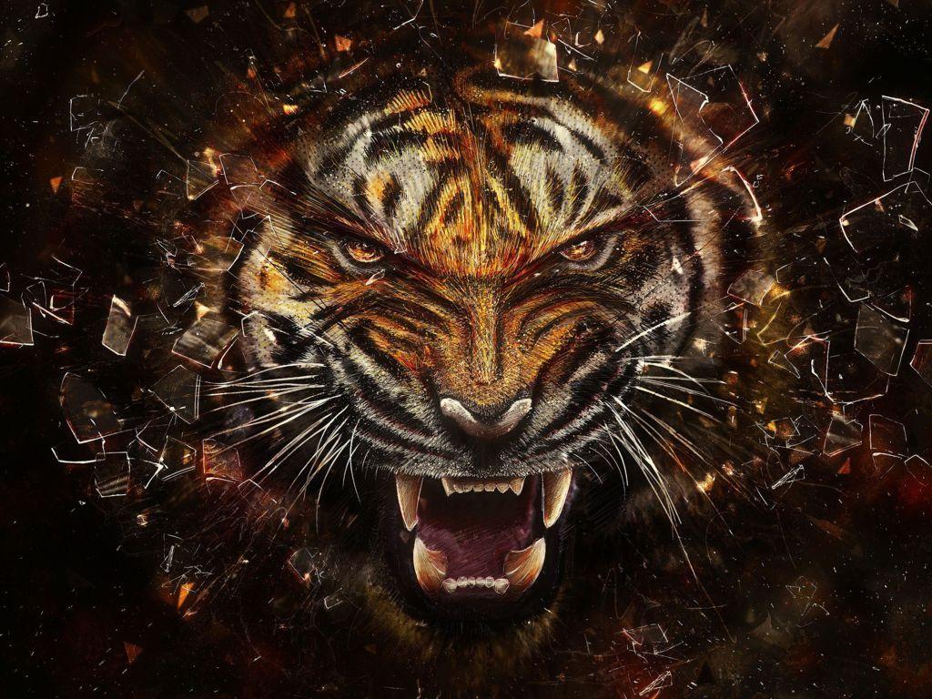 Tiger Wallpaper 50 Go Go Away Not