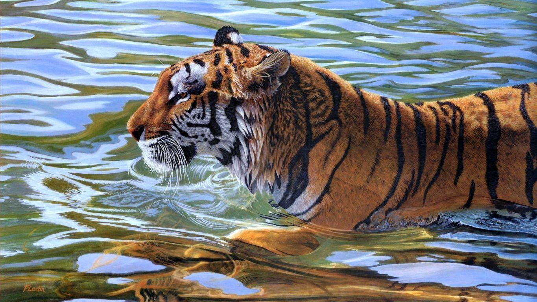 Tiger tigers wallpaper
