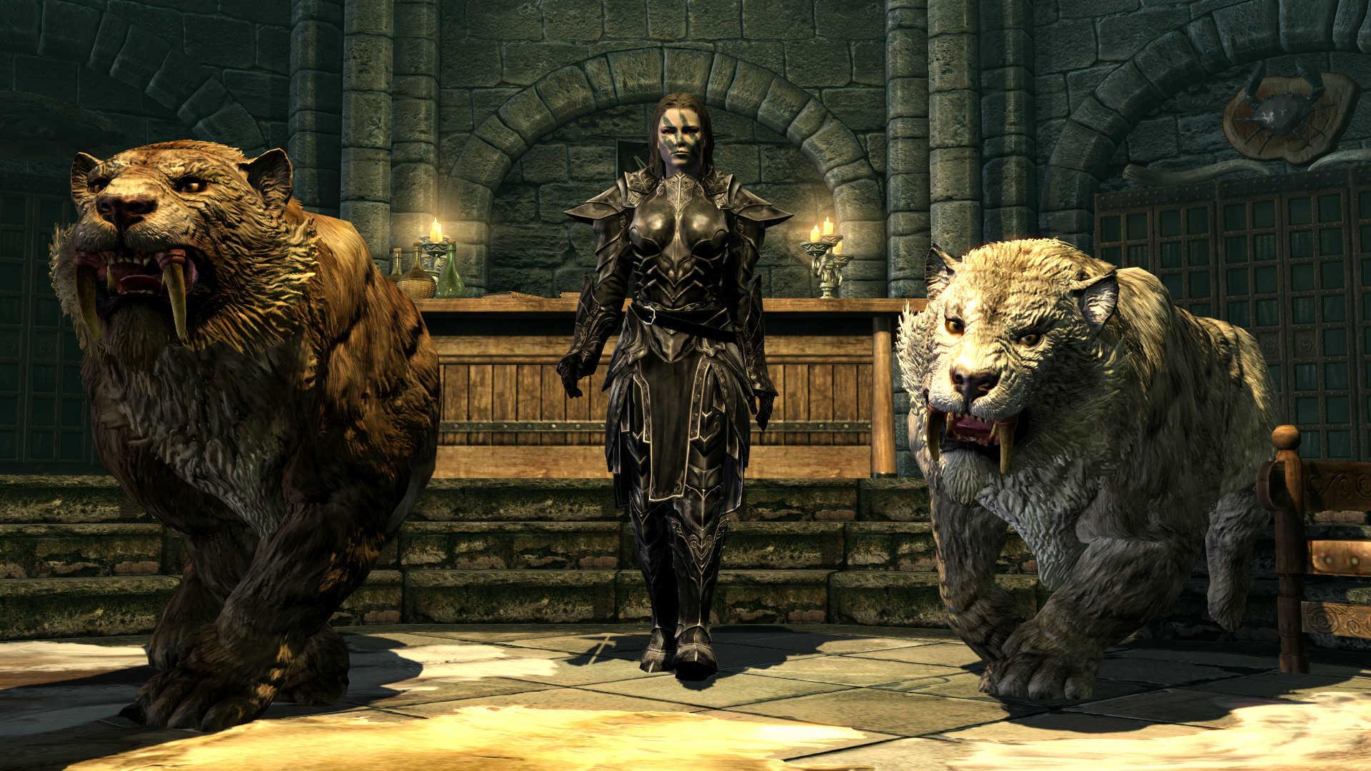 Wallpaper The Elder Scrolls Heroes Of Skyrim 4k Games Legends