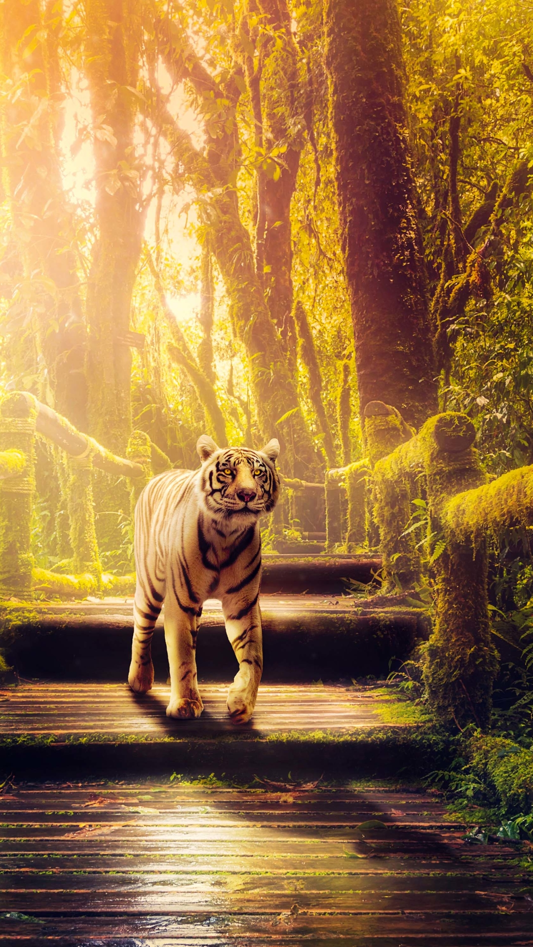 Best 33+ Tiger Phone On Hipwallpapers Wallpapers