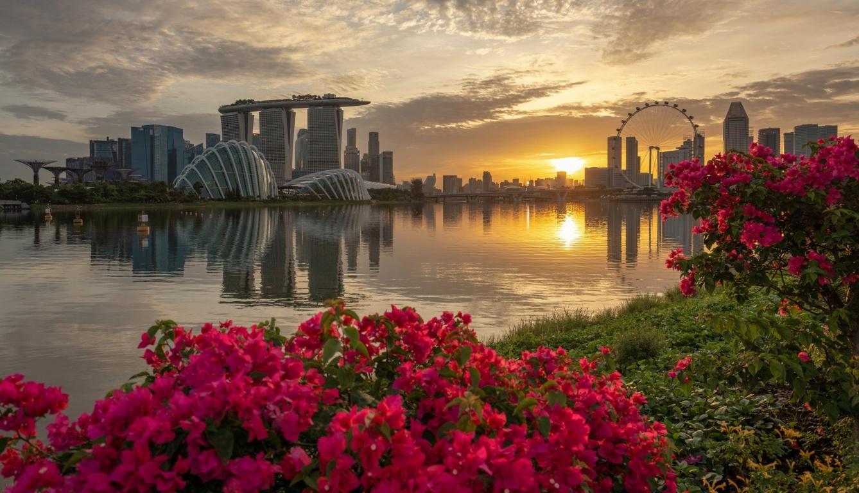 Cityscapes singapore wallpaper PC