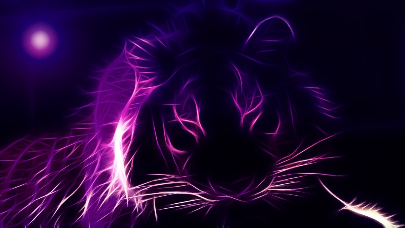Download Free Tiger Hd Px Wallpapers