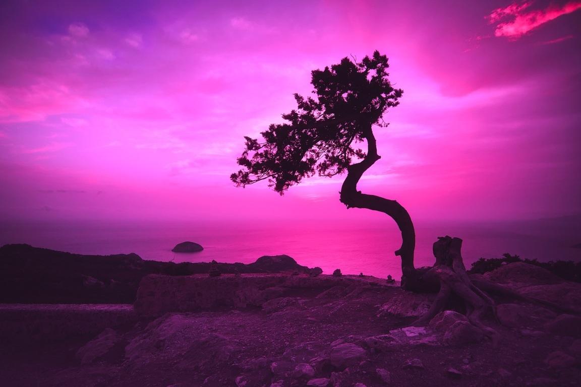 Earth Rock Tree Beach Ocean Sea Coast Sunset Greece Nature Hd Background Image Sand