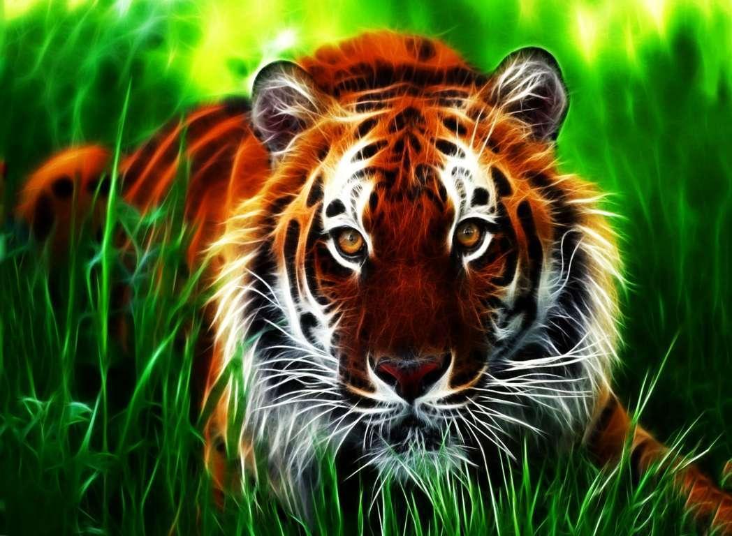Roaring Tiger 4K Wallpapers