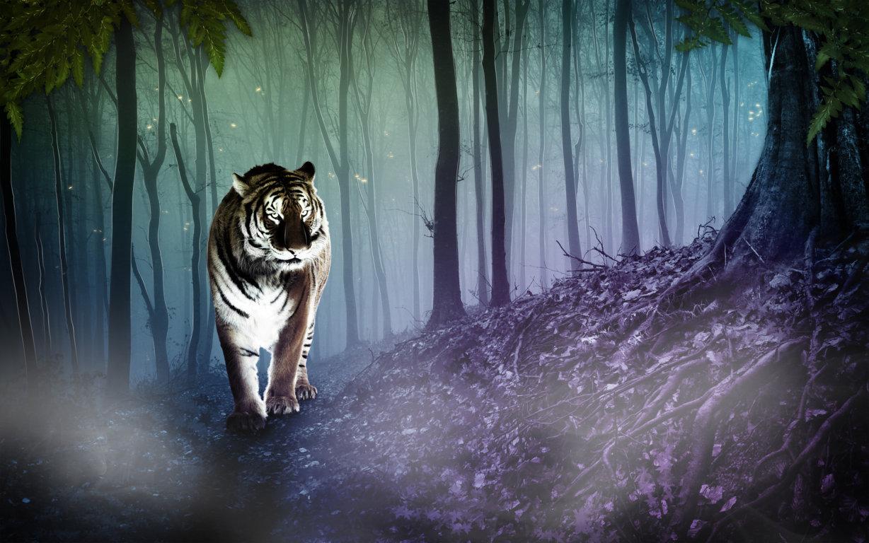 Roaring Tiger Ultra Hd Wallpapers 4k