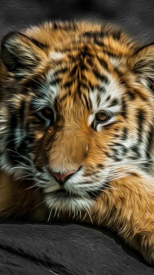 Tiger Phone Wallpaper Image Collection In
