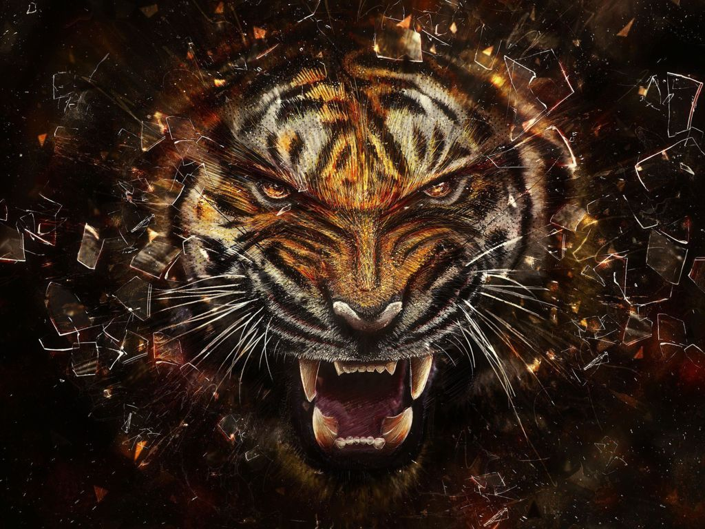Tiger Wallpaper Desktop Wallpaper Desktop Wallpaper Free