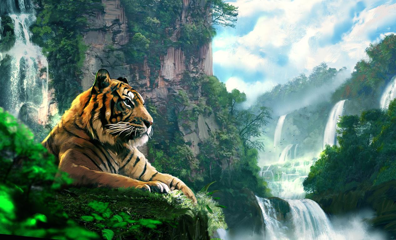 Tigers Cheetahs Leopards Wallpapers Amp Hd Desktop Background