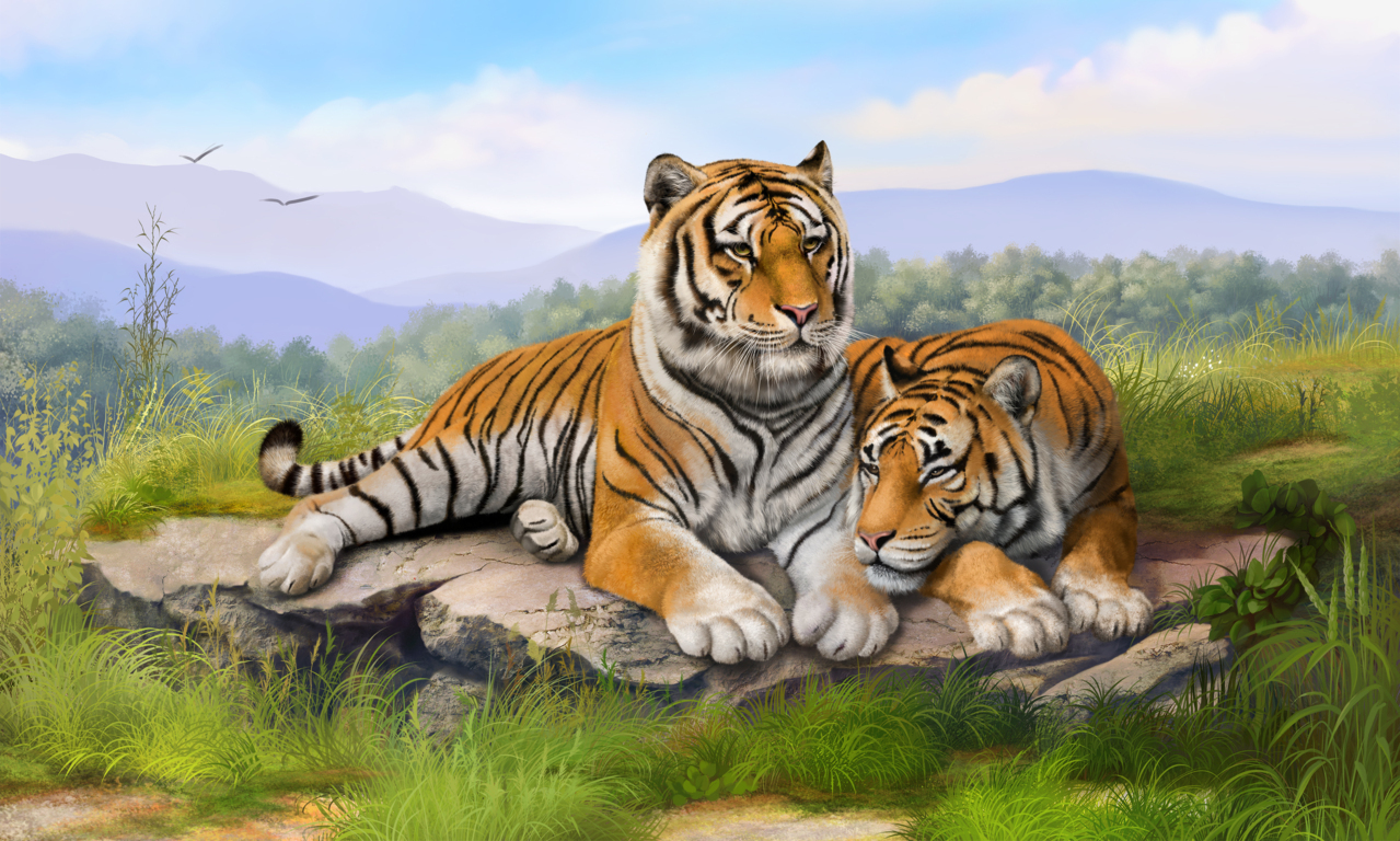 Tigers Hd Wallpapers For Desktop Your
