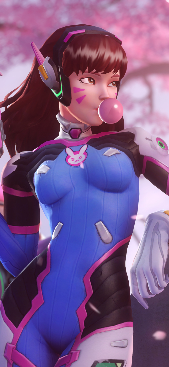 Video Game Overwatch