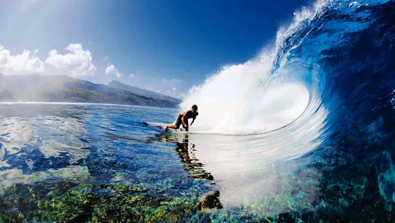 Wave Ocean Surf Surfing