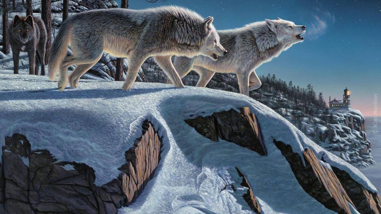 Demon wolf wallpaper