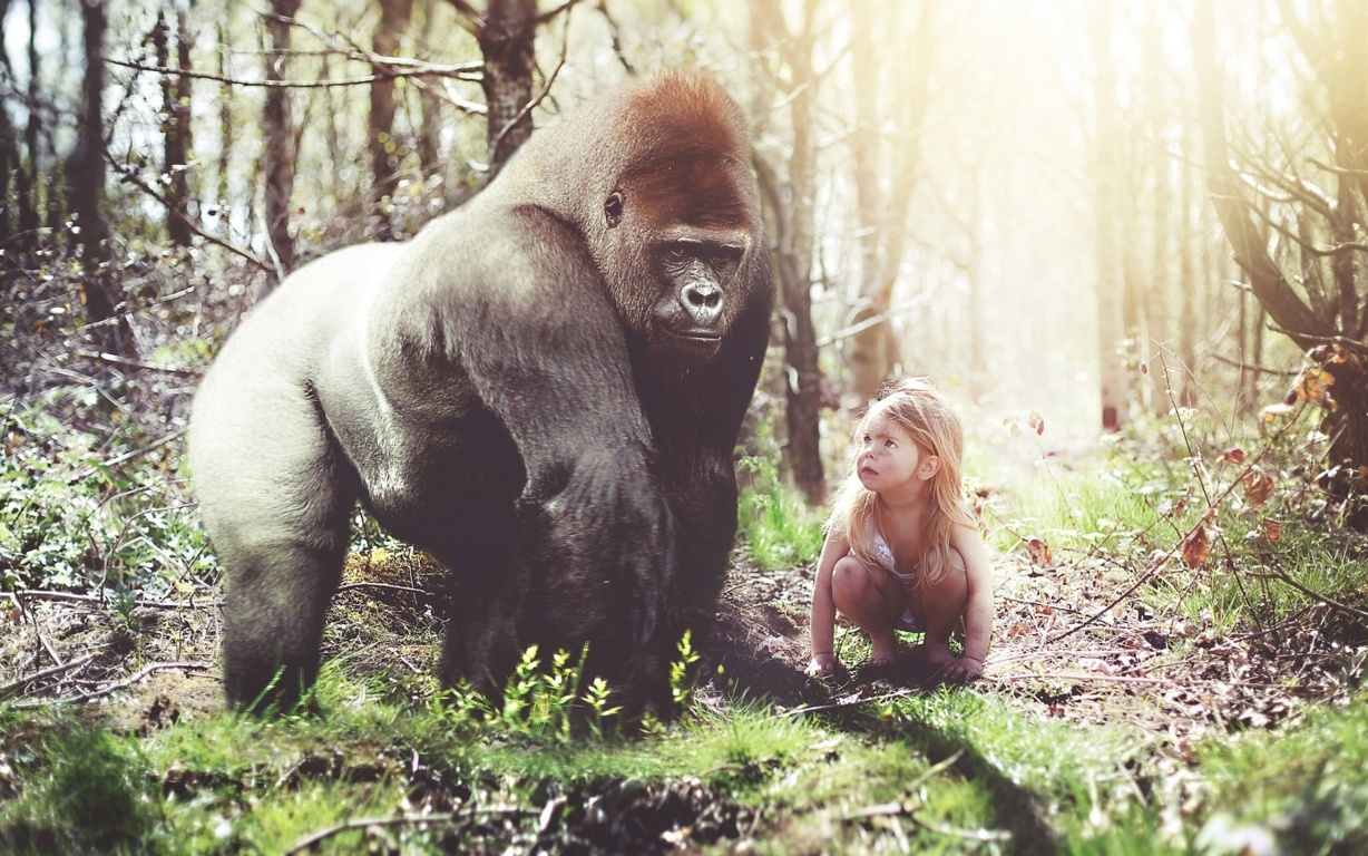 Gorilla Girl Monkey Forest Girls Humor Funny Cute Situation