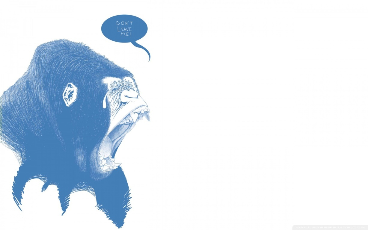 Gorilla Hd Wallpaper And Images Background