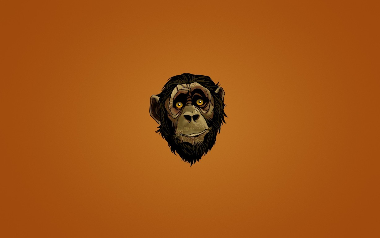 Monkey Wallpapers Tiptop 3d Wallpapers Collection Hd